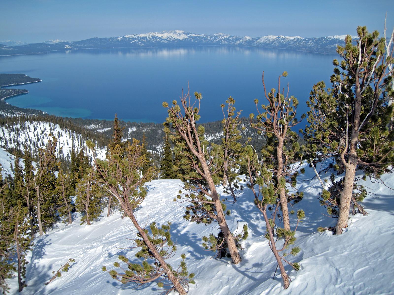 view from atop Jake's Peak, west shore Lake Tahoe