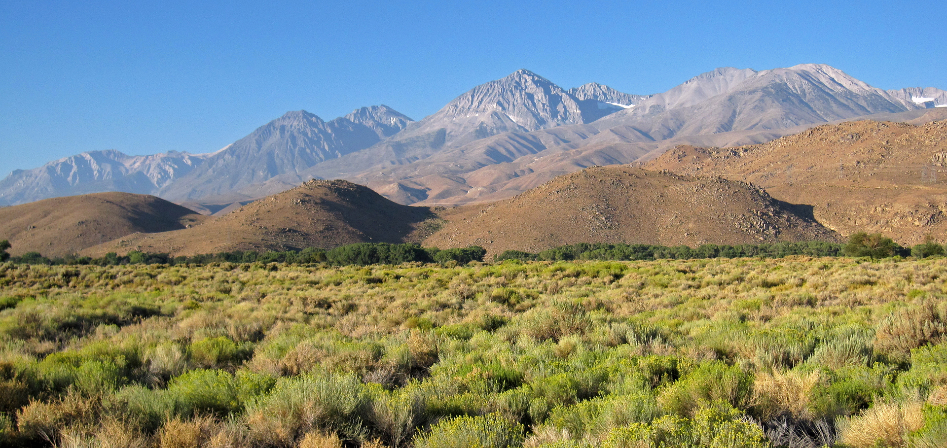 from the Owens Valley, near Big Pine, California