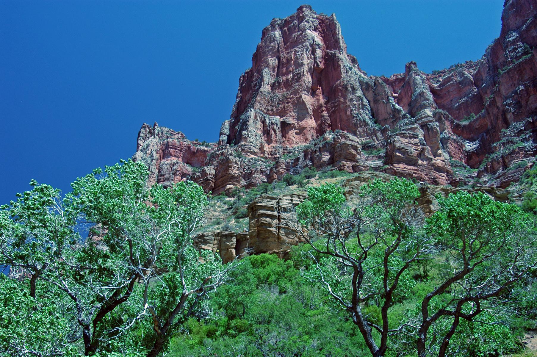 North Kaibab Trail, Grand Canyon, AZ